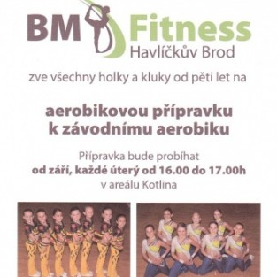 Fitness step aerobik